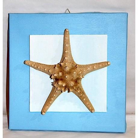 Quadro con stella marina.