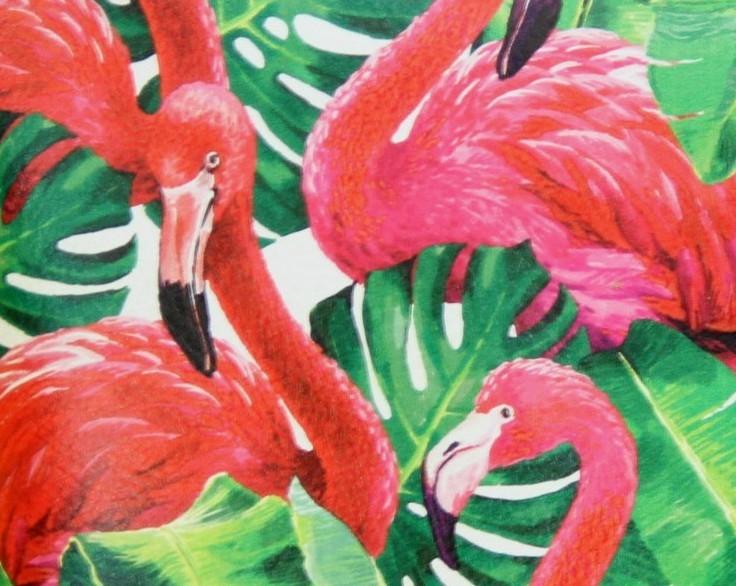 Verde pellicani rosa